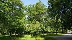 Warnemunde Kur Park