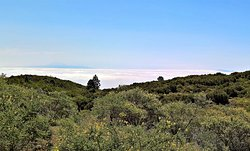 Tenerife and Gomera visible on the horizon across the 'sea of cloud'