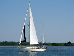 Shamrock Sailing Adventures