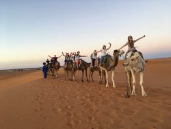 Morocco Stars Travel Day Tours