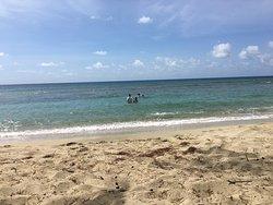 Cane Bay
