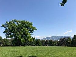 Parc Trembley