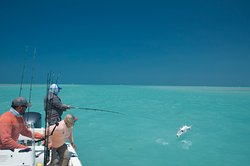 All Water Fishing Charters