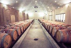 Xanadu Winery