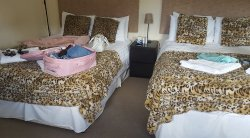 Lovely comfortable rooms