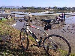 Chiangrai Bicycle Trip