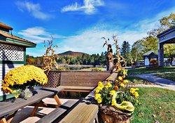 Best Western Saranac Lake