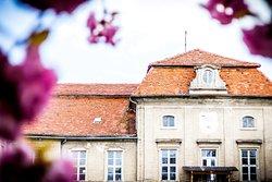 Schloss Plaue GmbH