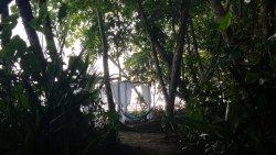 Faith Glamping Dome CR es un paraíso, un lugar de encuentro con lo exótico y con la sanación a t
