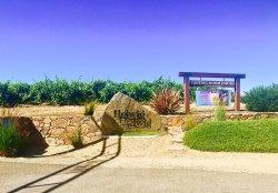 Helwig Vineyards & Winery