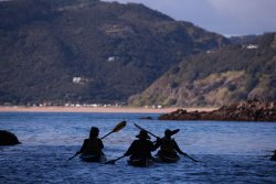New Zealand Sea Kayak Adventures