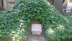 Dante's tomb and Quadrarco of Braccioforte