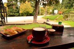 Raíces Cafe & Bar