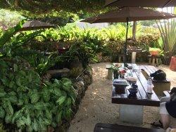 Kuchu And Paradise Cafe