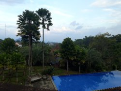 Eco hotel with kampong styles