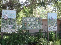 Suncoast Primate Sanctuary Foundation, Inc.
