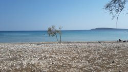 Piso Aliki Beach