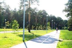 Gilevskaya Grove