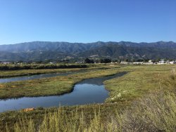 Carpinteria Salt Marsh Nature Park