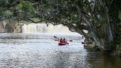 Coastal Kayakers