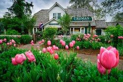 Truman Cafe & Custard