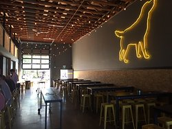 Yellow Dog Brewing Co.