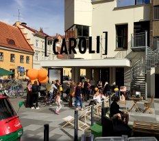 Kv Caroli