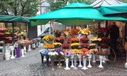 Plac Solny