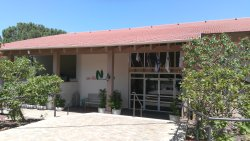 Life in a kibbutz