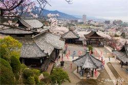 Onjo-ji Temple