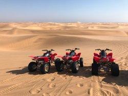 Desert Explorers