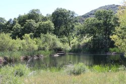 Oak Glen Preserve