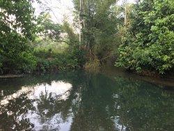 Cabarita River