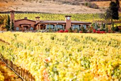 Tsillan Cellars Winery