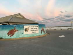 Navarre Beach Sea Turtle Conservation Center
