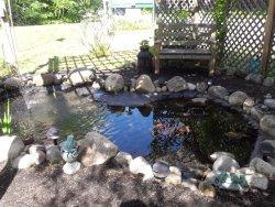 Fish Pond Sitting Area