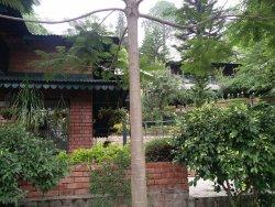 Awseome stay at Baikunth Resort,Kasauli