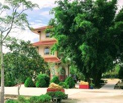Linh Son Buddhist Temple