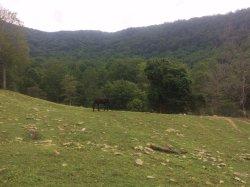 Perfect Mountain Getaway