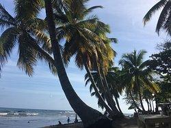 Palenque Beach