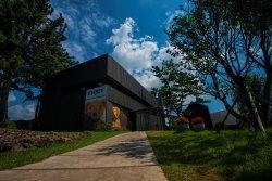 Joanne Bear Museum