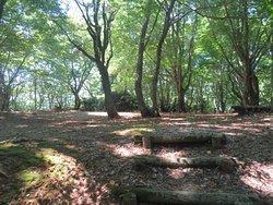 Sekidosan Castle Remains