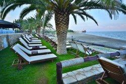 Ξαπλώστρες με θέα την παραλία και το ναυάγιο