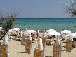 La spiaggia più bella con tutti i servizi!