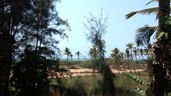 Great property around Colva, Goa