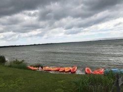 Kayaks to rent