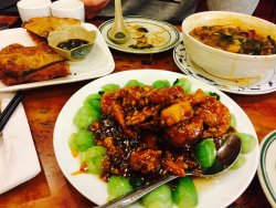 Gourmet Dumpling House