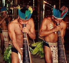 Jaguar Amazon Tours