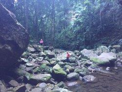 Gap Creek Falls Trail