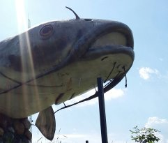 Wahpeton Wahpper - World's Largest Catfish